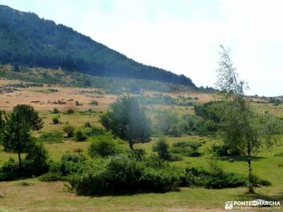 Canencia-Mojonavalle-Sestil de Maillo;actividades de montaña el taller excursionista actividades pa